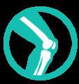 Pediatric Orthopaedics